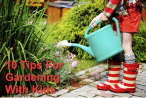 10 Tips For Gardening With Kids